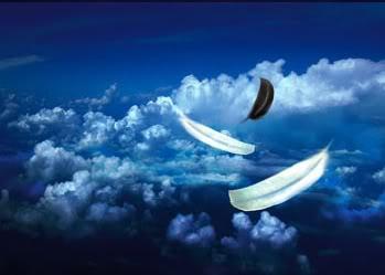 Resultado de imagen de plumas angelicales